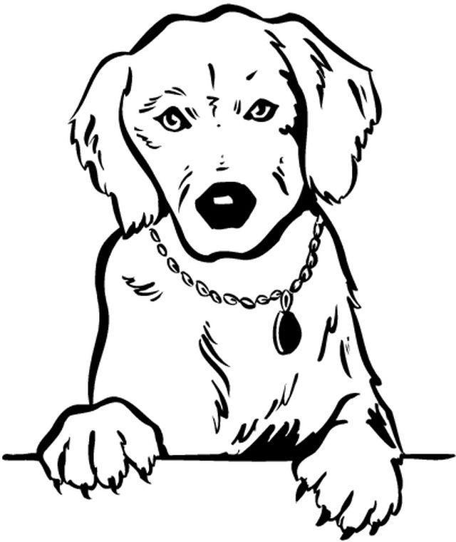 Coloriages animaux chiens - Coloriage de chiot ...
